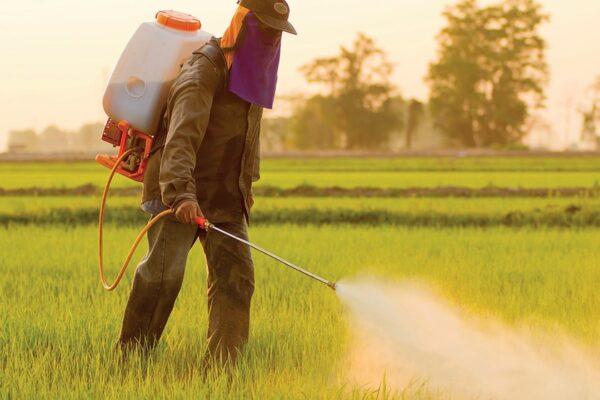 Agricultores mais digitais depois da pandemia